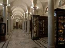 """Museo di Anatomia Umana """"Luigi Rolando"""" dell'Università di Torino"""