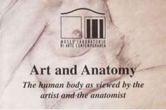 Art and Anatomy. The human body as viewed by the artist and the anatomist